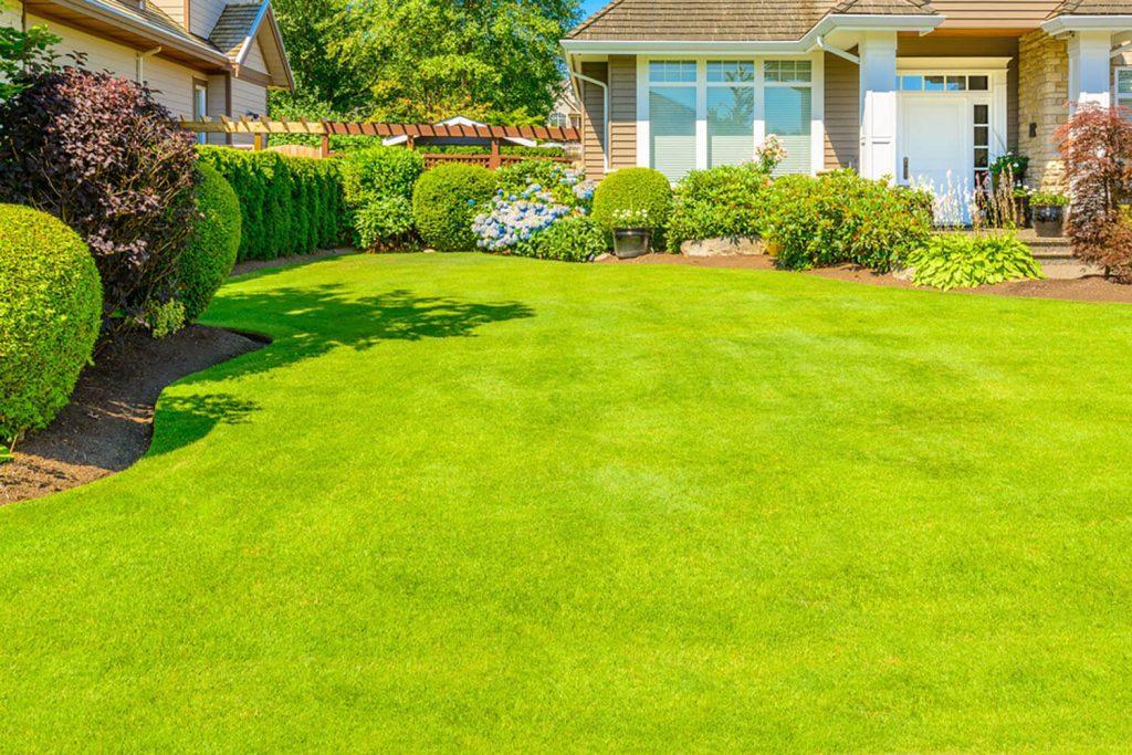 <center><b>Jardines Pequeños: Consigue grandes espacios con pequeñas ideas</center></b> 3