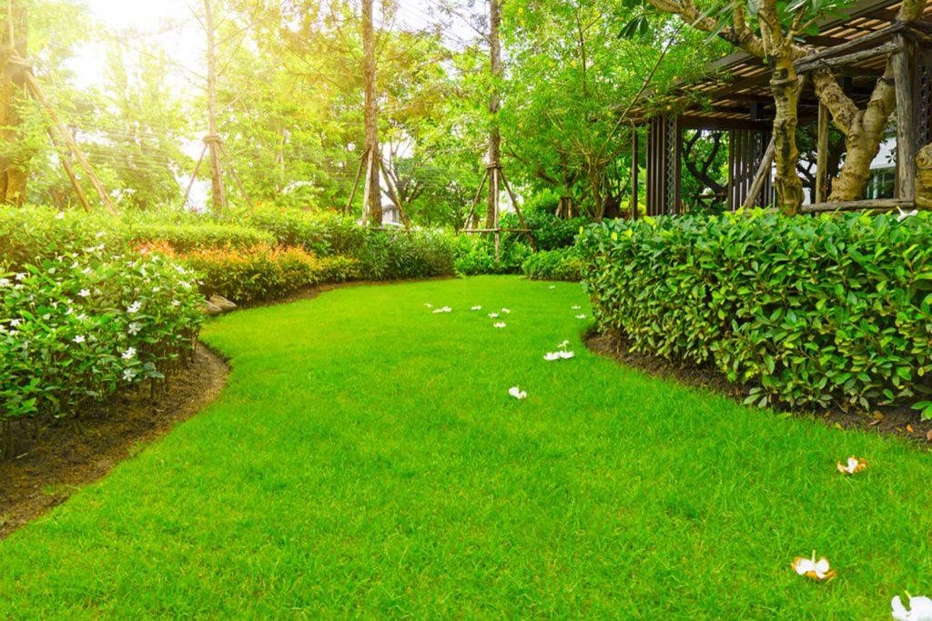 <center><b>Jardines Pequeños: Consigue grandes espacios con pequeñas ideas</center></b> 4