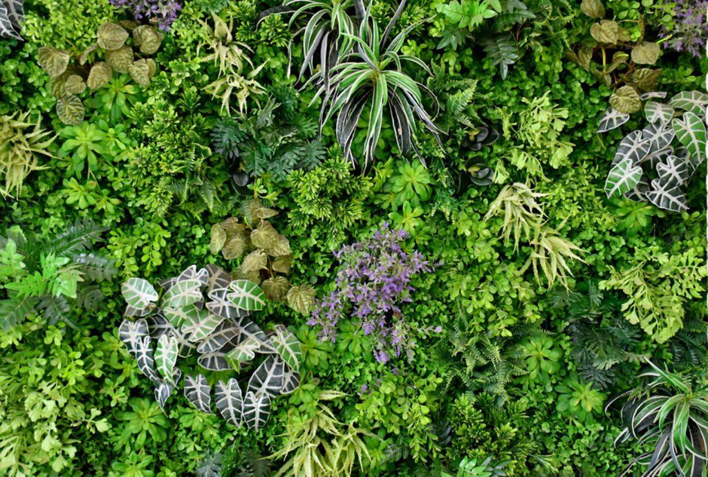 <center><b>Jardines Japoneses: Un símbolo de la eternidad de la naturaleza</center></b> 4