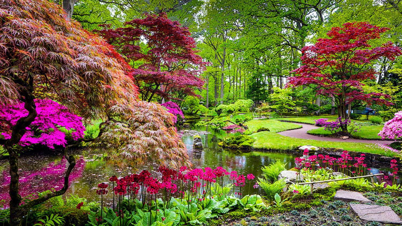 <center><b>Jardines decorativos: Un lienzo en blanco para hacer volar tu imaginación</b></center> 1