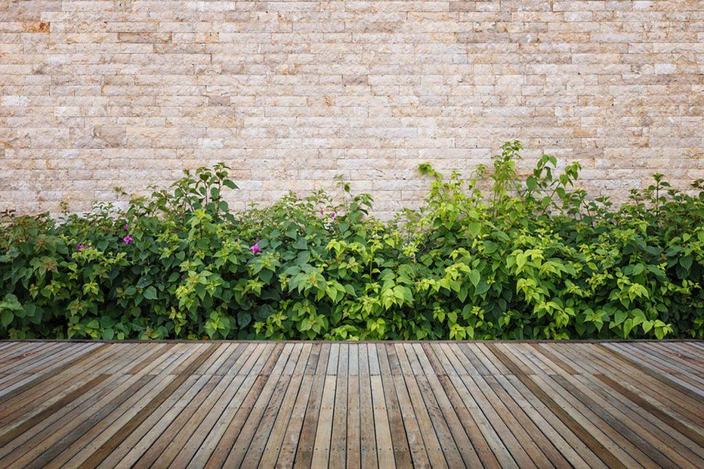 <center><b>Jardines decorativos: Un lienzo en blanco para hacer volar tu imaginación</b></center> 4