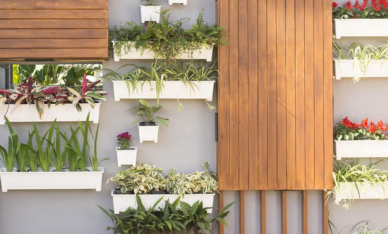 <b><center>Jardines verticales con macetas: ¡Una alternativa que no dejarás de lado!</b></center> 1