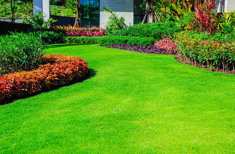<b><center>Técnicas para no fallar en el diseño de jardines</b><center> 1