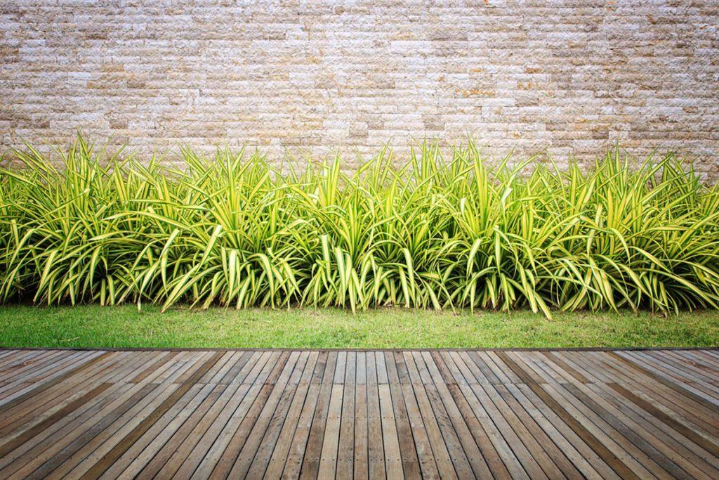 <center><b>Jardines con encanto: 6 pasos para convertir tu jardín en un cuento de hadas</center></b> 3